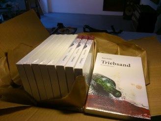"""Raul Ascher (Lothar Böhm) - """"Triebsand"""" - Kriminalroman"""